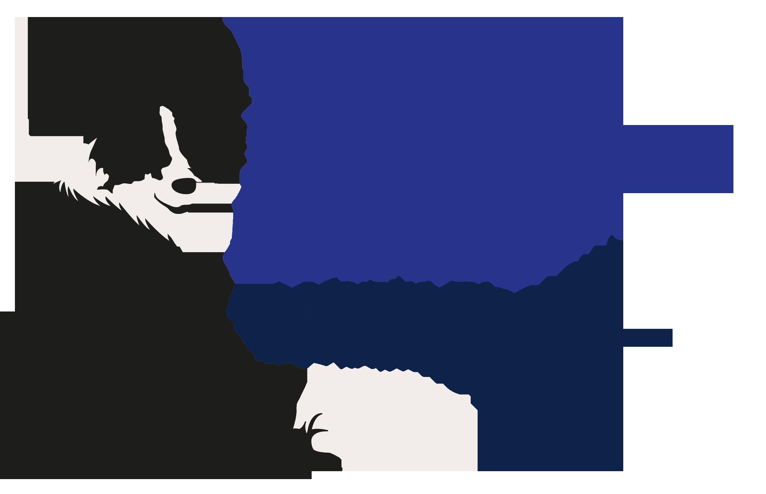 COAPE Qualified Dog Behaviourist and Trainer in Horsham