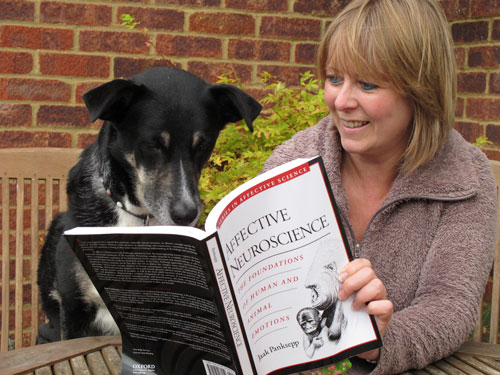 Zara the dog reading a book